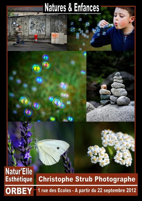 Affiche expo Enfances et Natures.jpg